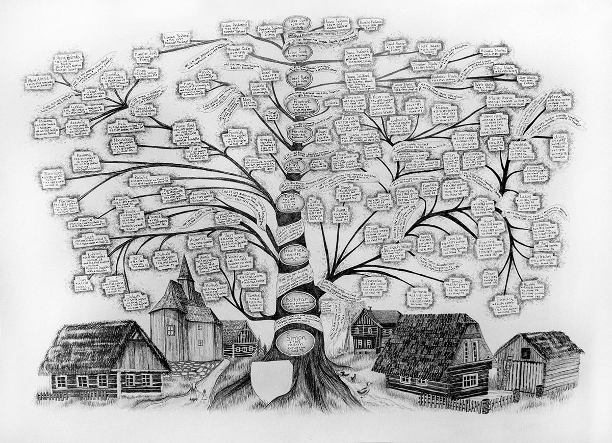 Sukupuu Taulu